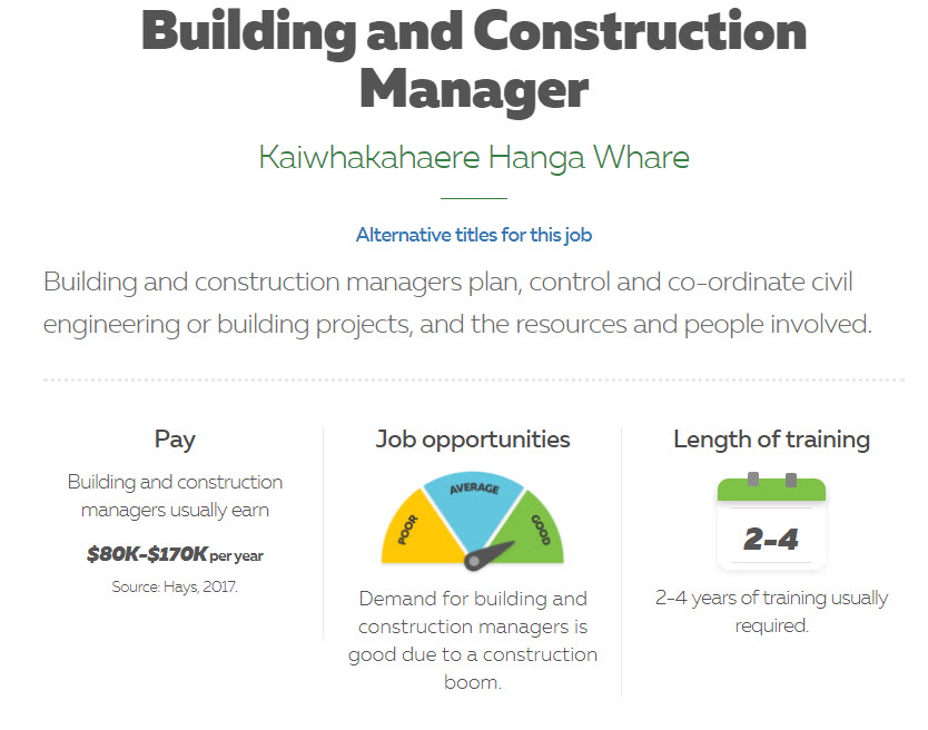 Building and Construction Manager2.jpg